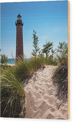 Little Sable Light Station - Film Scan Wood Print by Larry Carr