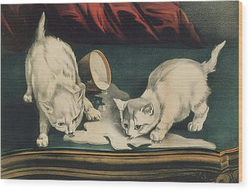 Wood Print featuring the painting Little White Kitties Into Mischief                                                      by Matthias Hauser