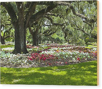 Wood Print featuring the photograph Live Oaks At Brookgreen Gardens by Bill Barber
