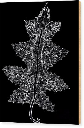 Lizard And Leaf Wood Print by Nick Gustafson