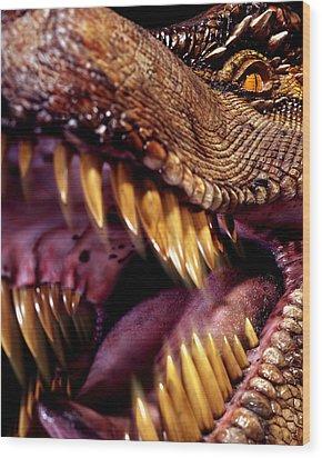 Lizard King Wood Print by Kelley King