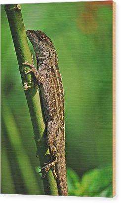 Lizard Wood Print by Michael Peychich