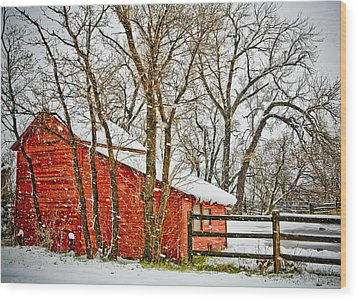 Loafing Shed Wood Print by Marilyn Hunt