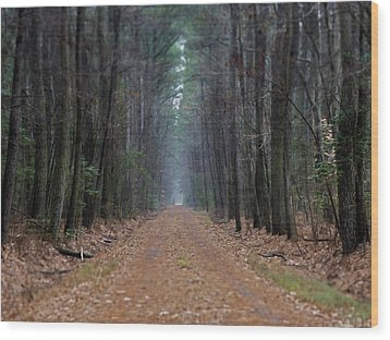 Wood Print featuring the photograph Loblolly Lane by Robert Geary