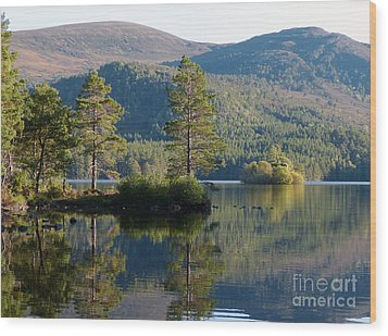 Loch An Eilein - Cairngorms National Park Wood Print
