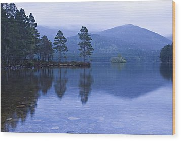 Wood Print featuring the photograph Loch Garten In The Cairngorms Scotland by Gabor Pozsgai