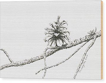Lodgepole Pine Cone Wood Print