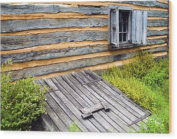 Log Cabin Storm Cellar Door Wood Print by Paul W Faust -  Impressions of Light