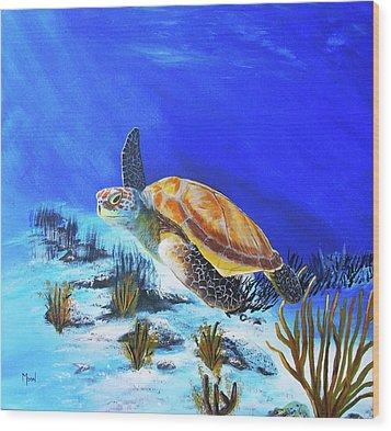 Loggerhead Sea Turtle Wood Print by John Moon