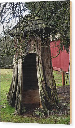 Loggers Outhouse Wood Print