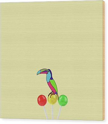 Lolipop Bird Wood Print