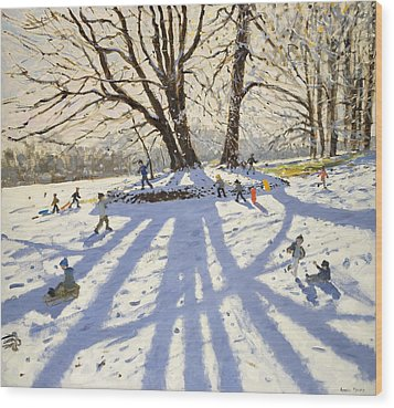 Lomberdale Hall Derbyshire  Wood Print by Andrew Macara