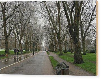 London Hyde Park Wood Print