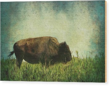 Lone Bison On The Prairie Wood Print by Ann Powell