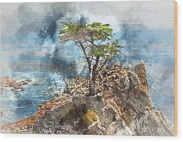 Lone Cypress In Monterey California Wood Print
