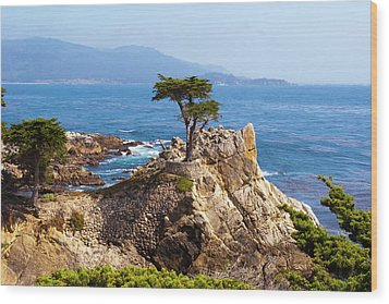 Lone Cypress Wood Print by Lou Ford