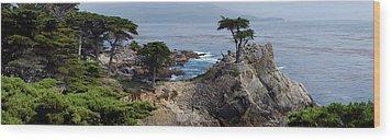 Lone Cypress Wood Print by Luis Esteves