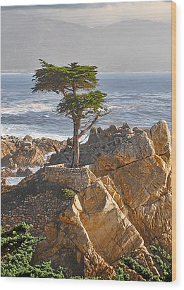 Lone Cypress - The Icon Of Pebble Beach California Wood Print