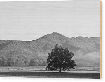 Wood Print featuring the photograph Lone Mountain Tree by Bob Decker