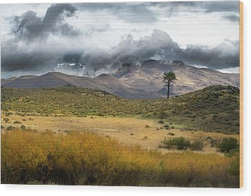 Wood Print featuring the photograph Lone Pine High Desert Nevada by Frank Wilson