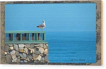 Lone Sea Gull Wood Print by Doreen Whitelock
