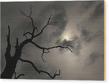 Lone Tree And Sun Toned Wood Print by David Gordon