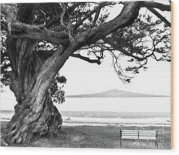 Lone Tree Bench And Volcano Wood Print by Yurix Sardinelly