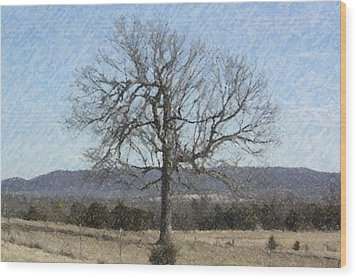 Lone Tree Wood Print by Donna G Smith