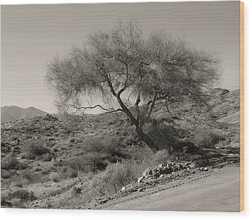 Wood Print featuring the photograph Lone Tree by Gordon Beck