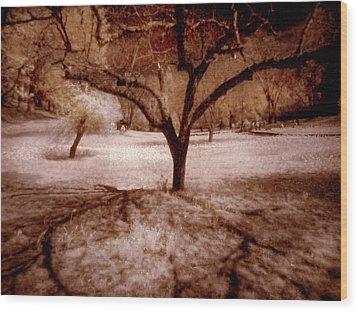 Lone Tree Wood Print by Michael Cleere
