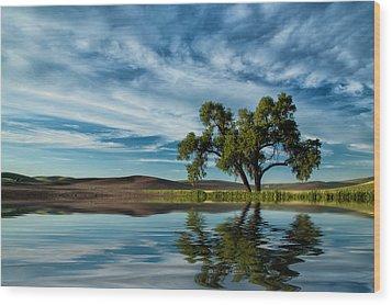 Lone Tree Pond Reflection Wood Print