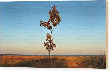 Loneliness Wood Print by Milena Ilieva