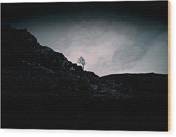 Loneliness Wood Print by Stewart Scott