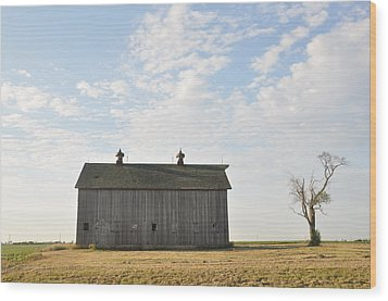 Lonely Barn Wood Print by Daniel Ness