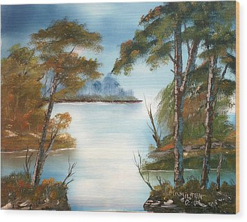 Lonely Bay Wood Print by Larry Hamilton