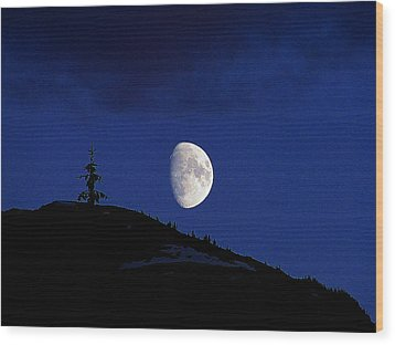 Wood Print featuring the photograph Lonely Companion by Blair Wainman