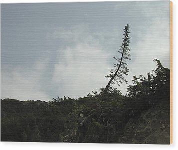 Lonely Wood Print