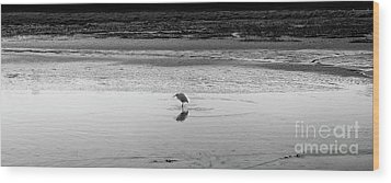 Wood Print featuring the photograph Lonely Heron by Nicholas Burningham