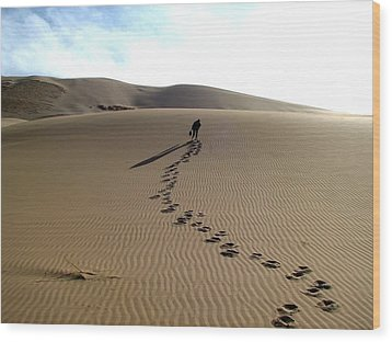 Lonely Hiker In The Gobi Wood Print