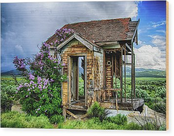 Lonely Lilacs Wood Print
