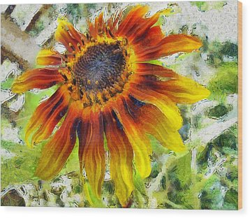 Lonely Sunflower Wood Print