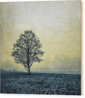 Wood Print featuring the photograph Lonely Tree by Marion McCristall