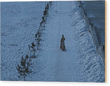 Lonely Walk/tsagaan Sar Wood Print