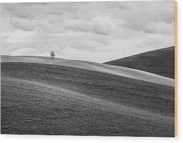 Lonesome Wood Print by Ryan Manuel