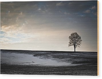 Wood Print featuring the photograph Lonesome Tree On A Hill IIi by David Sutton