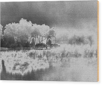 Wood Print featuring the photograph Long Ago Memory by Steven Huszar