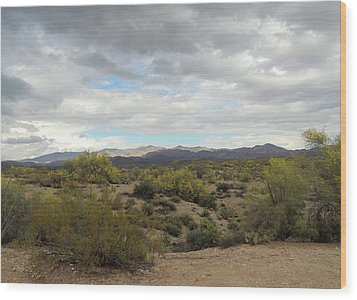 Wood Print featuring the photograph Long Desert View by Gordon Beck