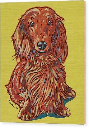 Long Haired Dachshund Wood Print