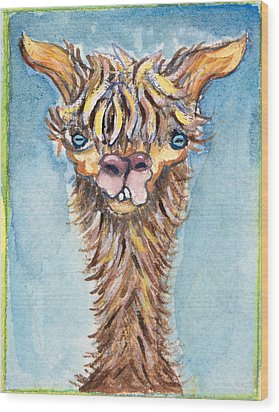 Long Neck Alpaca Wood Print