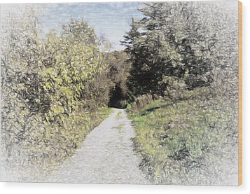 Long Trail Wood Print by Rena Trepanier